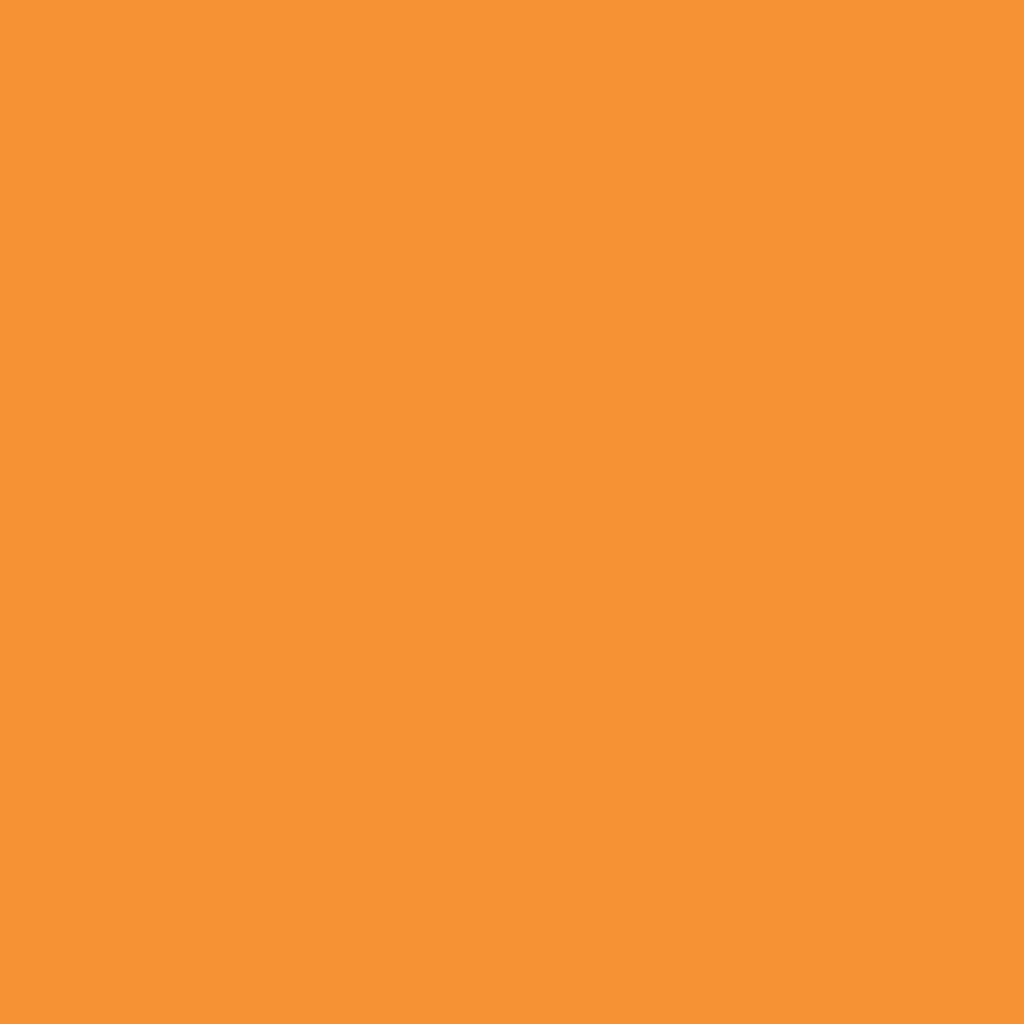 Бумага цветная 50*70см: FOLIA Цветная бумага,  300г/м2 50х70,охра 1лист в Шедевр, художественный салон