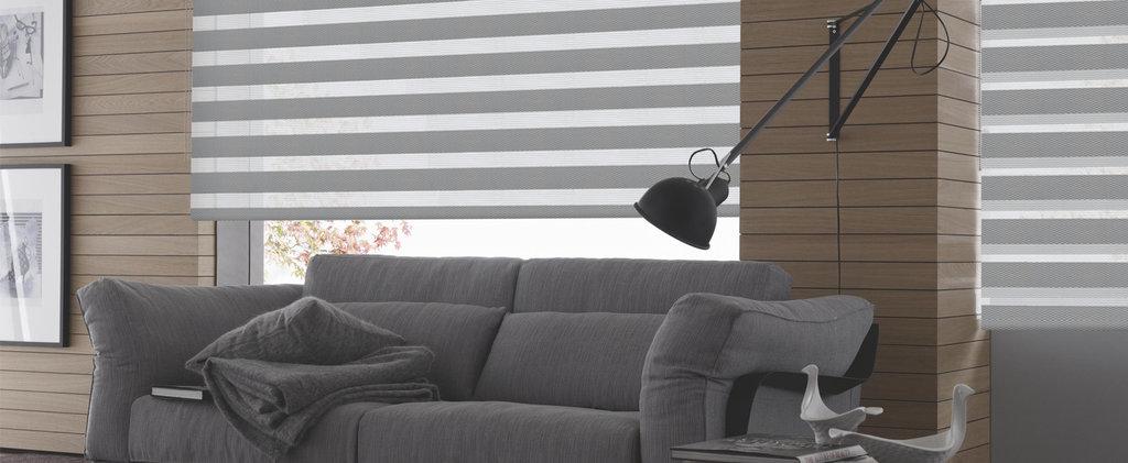 Рулонные шторы ЗЕБРА: Рулонные шторы ЗЕБРА MGS (BESTA) для закрытия проёмов в Салон штор, Виссон