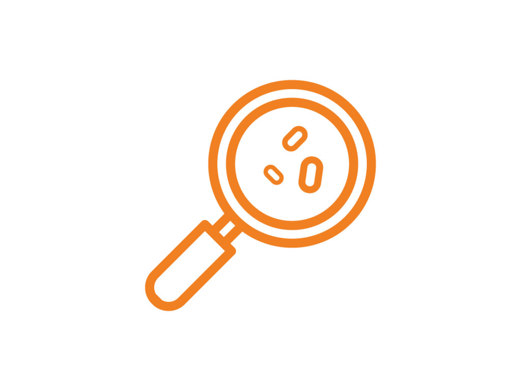Комплексные лабораторные исследования: Выявление ДНК N. gonorrhoeae, C. trachomatis, M. genitalium, T. vaginalis, Ureaplasma urealyticum, Ureaplasma parvum, M.hominis – комплесное исследование в ЛабСтори, медицинская компания