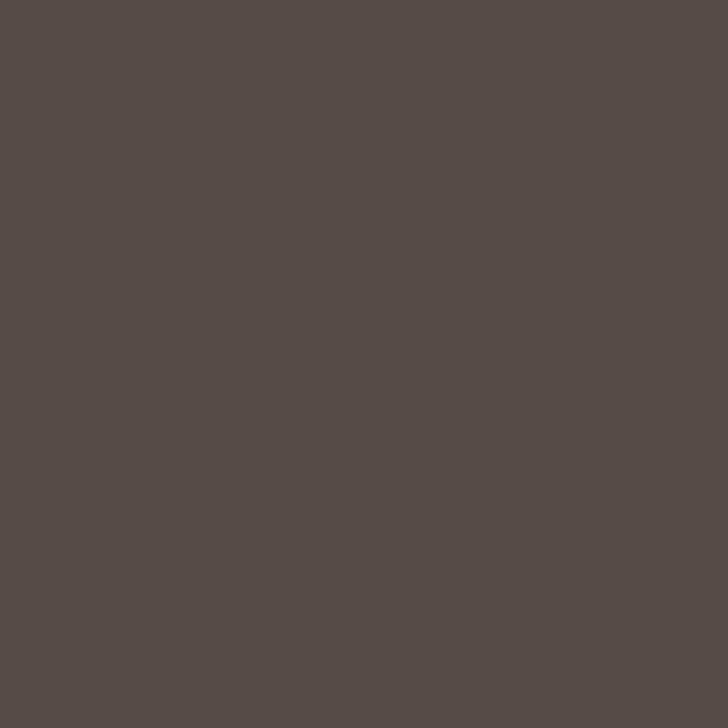 Бумага цветная 50*70см: FOLIA Цветная бумага, 130 гр/м2, 50х70см, темно-коричневый, 1 лист в Шедевр, художественный салон