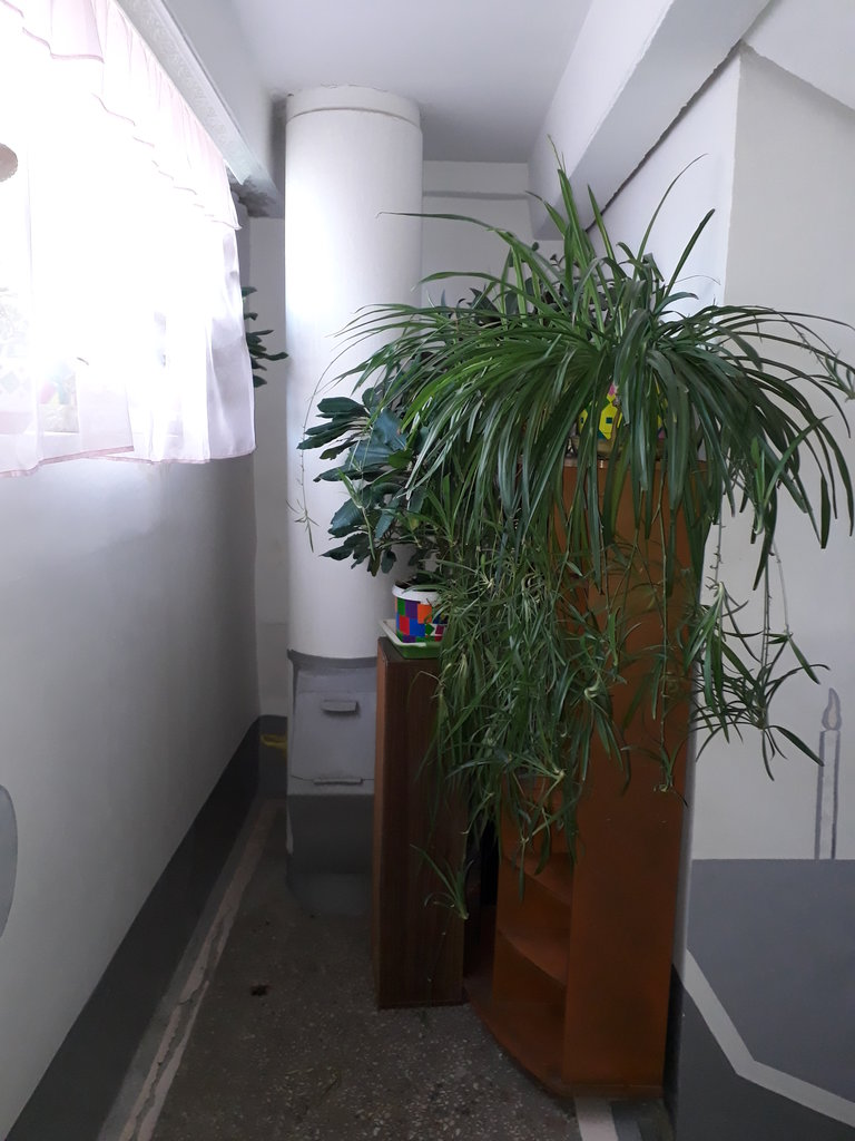 2-комн. квартиры: г. Орск, ул. М. Жукова, д.7 в Эверест
