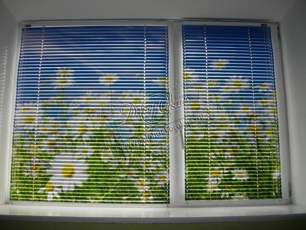 Жалюзи для окон: Жалюзи на пластиковые окна в Декор окна, салон