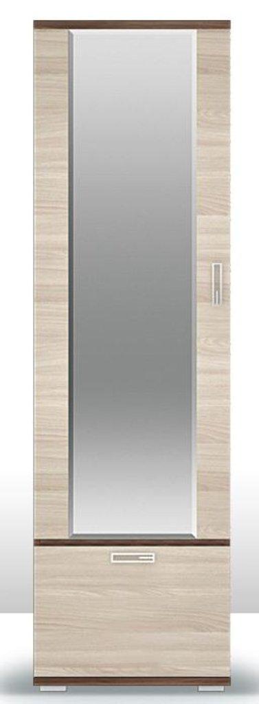Мебель для прихожей Веста Статус. Все модули: Шкаф (600) для одежды с зеркалом ПР.011.112 Веста Статус в Диван Плюс