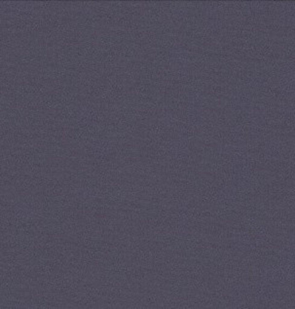 Бумага для пастели LANA: LANA Бумага для пастели,160г, 50х65,индиго, 1л. в Шедевр, художественный салон