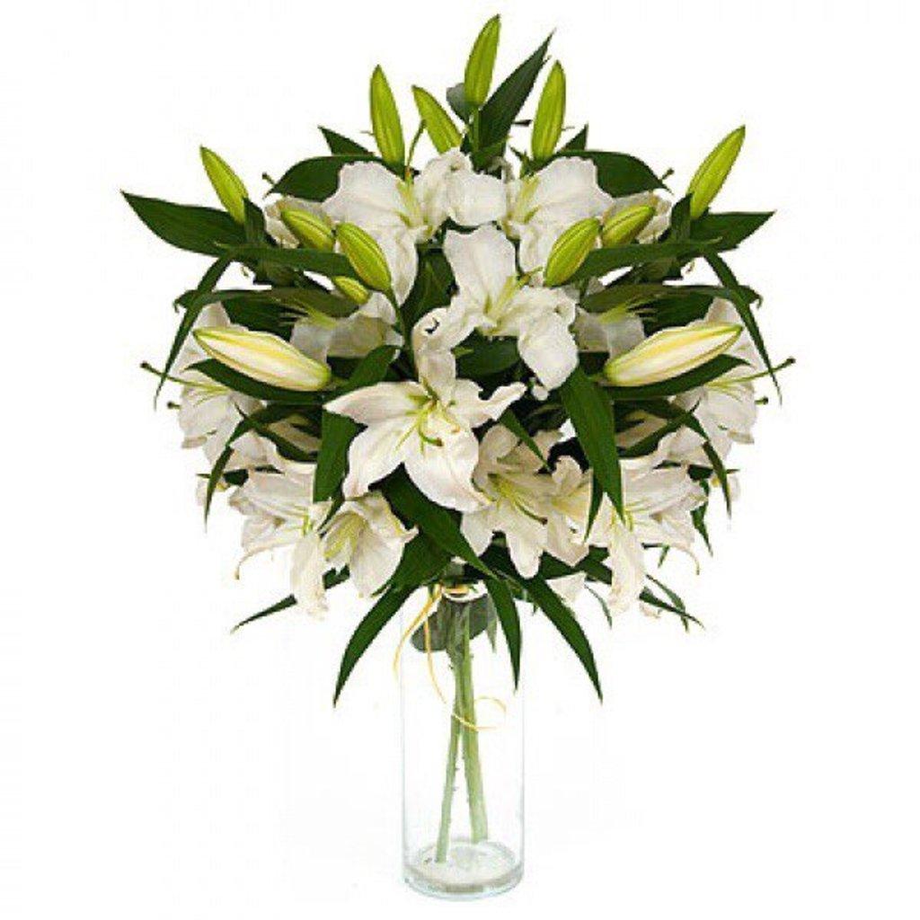Цветы: Лилия в Николь, магазины цветов