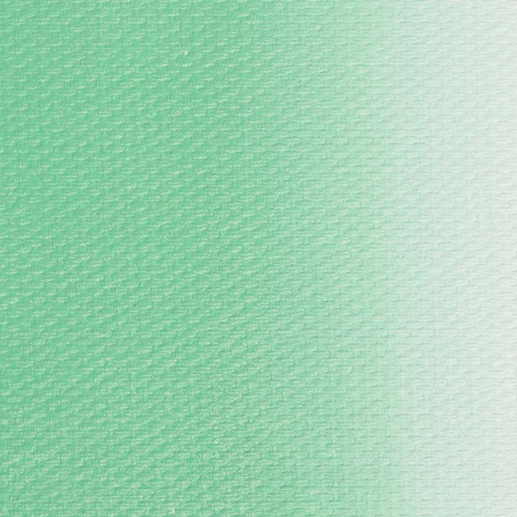 "МАСТЕР-КЛАСС: Краска масляная ""МАСТЕР-КЛАСС""  малахитовая светлая 46мл в Шедевр, художественный салон"