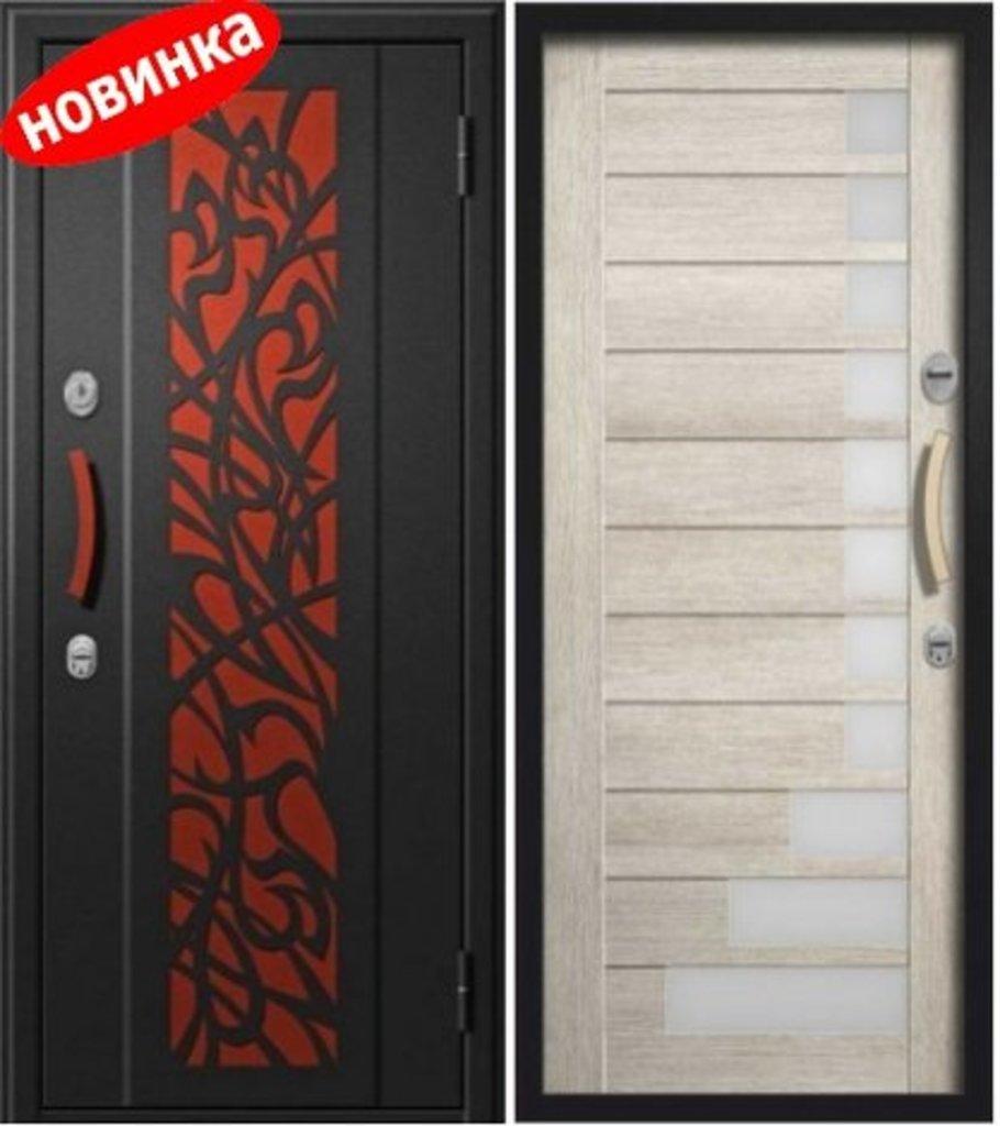 Двери Алмаз Космо: Входная дверь Сириус в Модуль Плюс