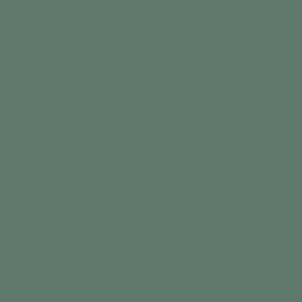 Бумага для пастели LANA: LANA Бумага для пастели,160г, 50х65,полынь, 1л. в Шедевр, художественный салон