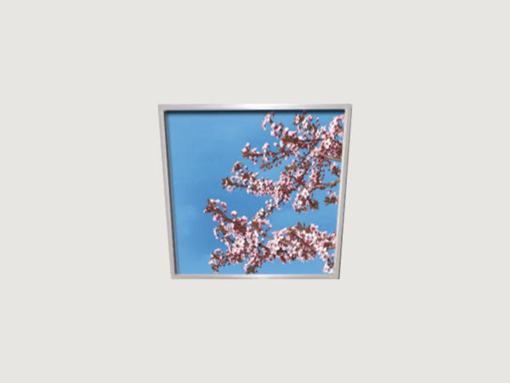 Витражные (стеклянные) потолки: Серия «Универ-Всена» в Мир Потолков