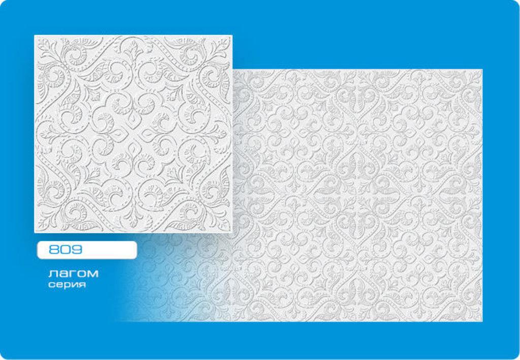 Потолочная плитка: Плитка ЛАГОМ прессованная 809 в Мир Потолков