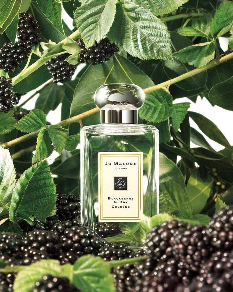 Jo Malone (Джо Малон): Jo Malone  Blackberry & Bay (Джо Малон Блекбери  энд Бай) edc 100ml в Мой флакон