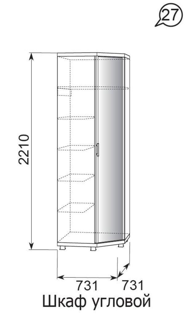 Мебель для прихожей Ирис (Дуб Бодега). Модули: Шкаф угловой с зеркалом Ирис 27 в Диван Плюс