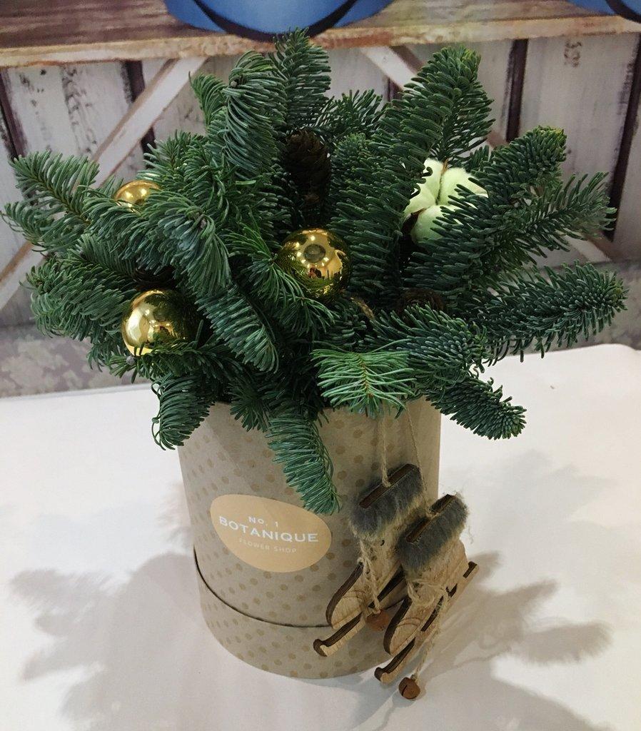 Коробочка с нобилисом в Botanique №1,ЭКСКЛЮЗИВНЫЕ БУКЕТЫ
