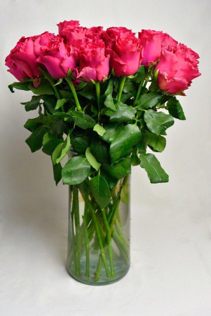 Цветы: Розы Пинк в Николь, магазины цветов