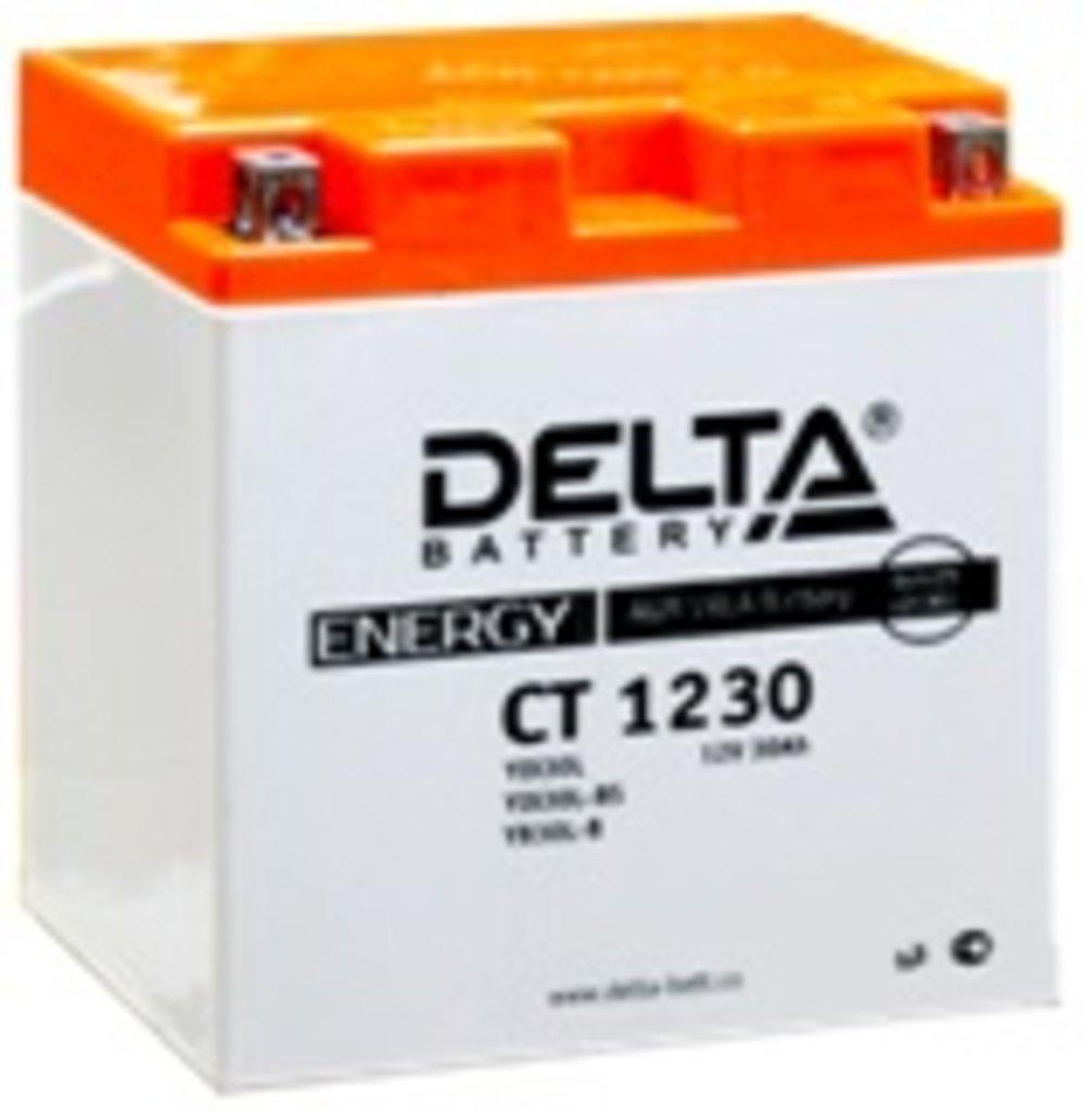 АКБ DELTA CT 1230 на квадроциклы Х5, Х6, Х5НО, Х8, U8, Z8 CF Moto в Базис72