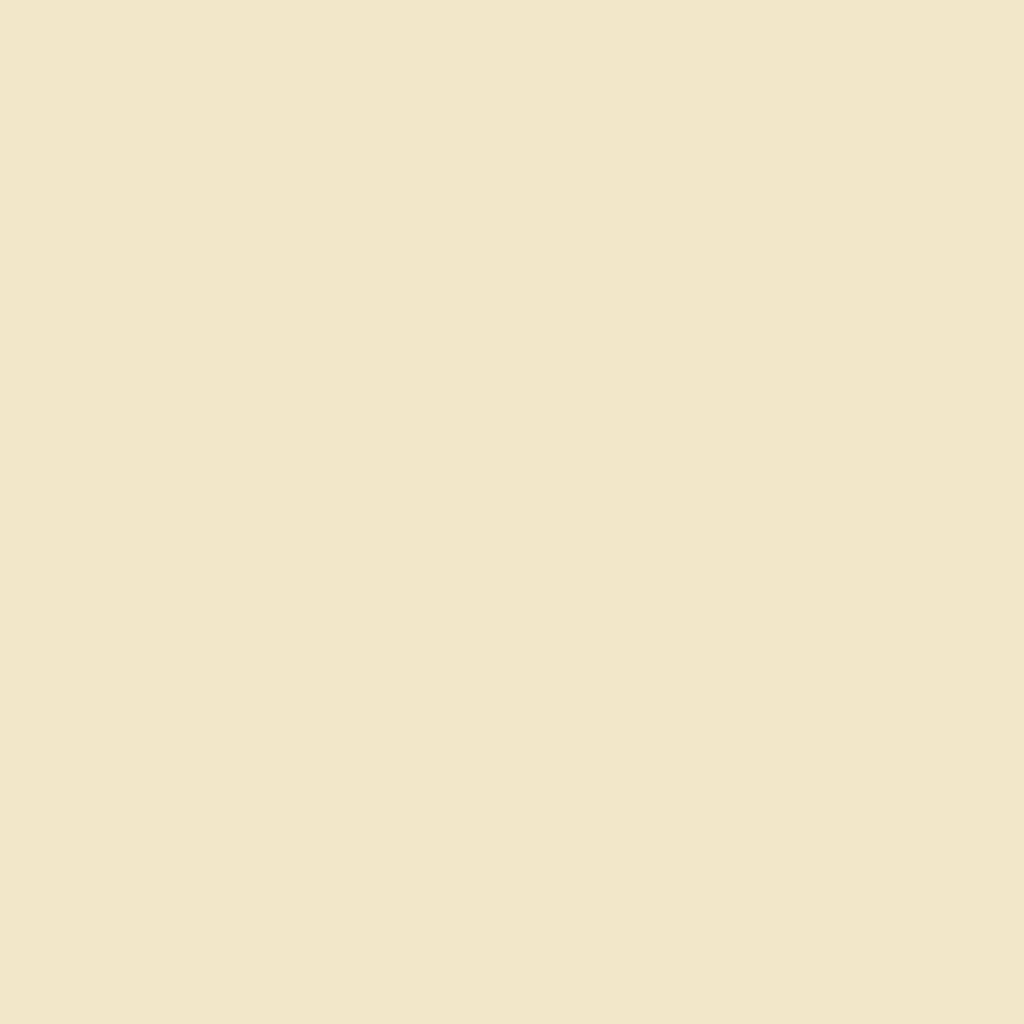 Бумага цветная А4 (21*29.7см): FOLIA Цветная бумага, 130г A4, бежевый, 1 лист в Шедевр, художественный салон