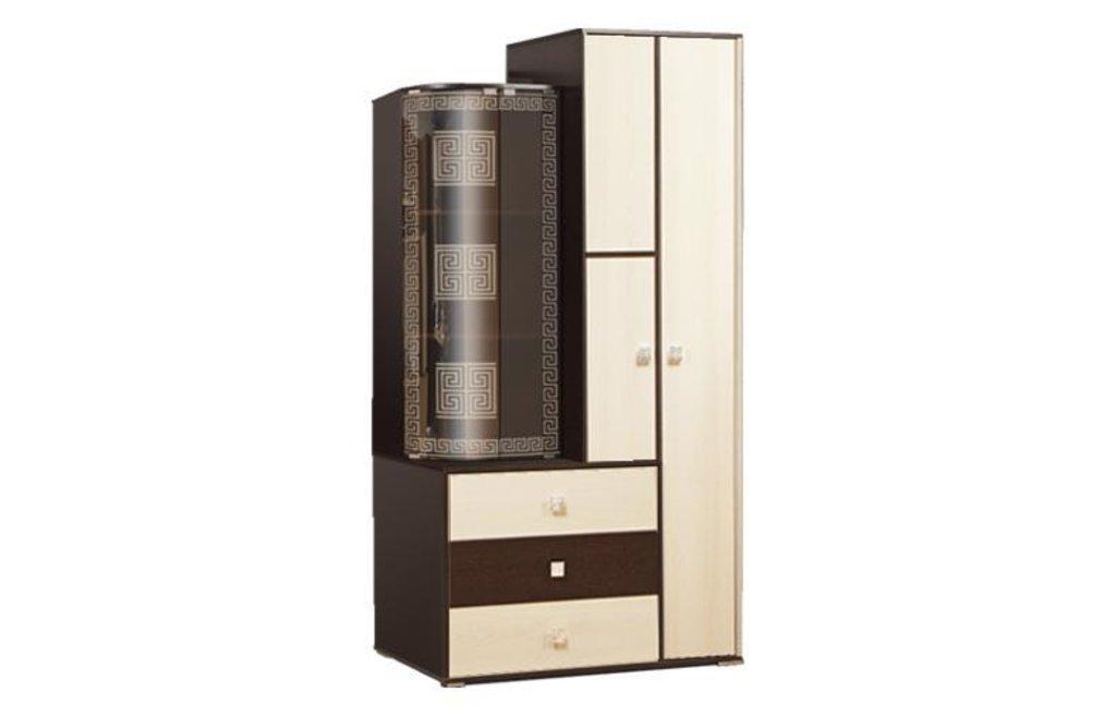 Модули гостиной Венера: Шкаф комбинированный 21.71 Венера в Vesa