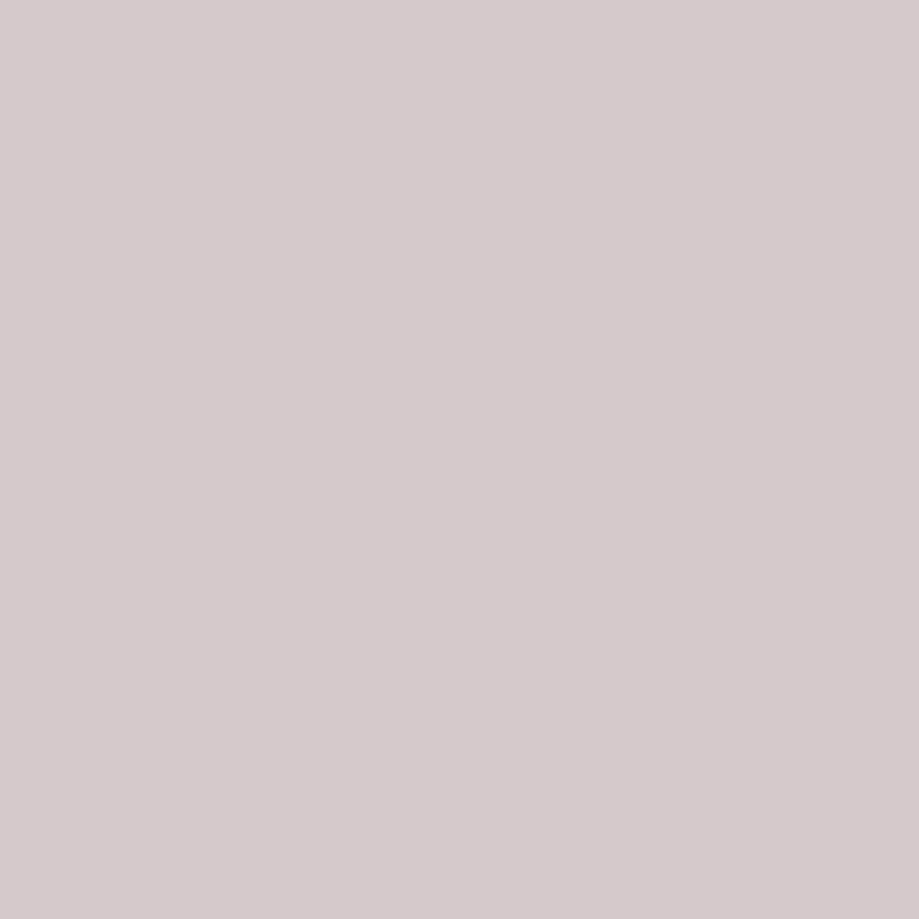 Бумага для пастели LANA: LANA Бумага для пастели,160г, 21х29,7, лунный камень, 1л. в Шедевр, художественный салон