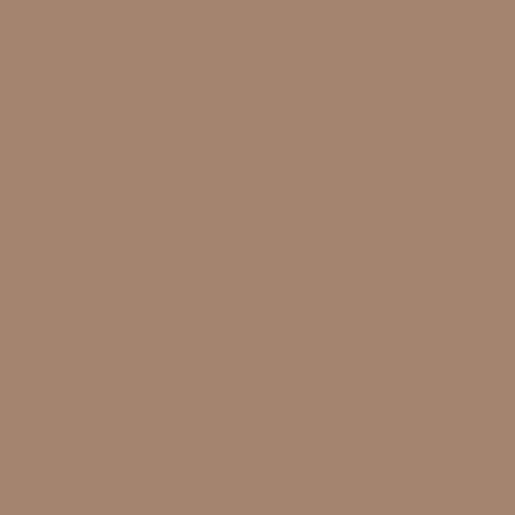 Бумага цветная 50*70см: FOLIA Цветная бумага, 130 гр/м2, 50х70см, светло-коричневый, 1 лист в Шедевр, художественный салон