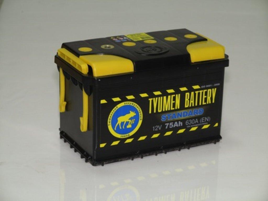 Аккумуляторы автомобильные: ТЮМЕНЬ 75 А/Ч L (ЗАЛ) в Мир аккумуляторов