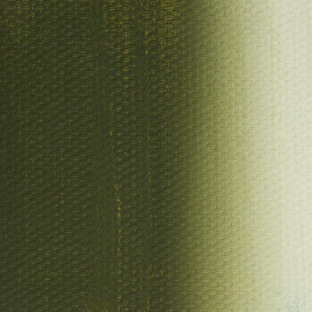"""МАСТЕР-КЛАСС: Краска масляная """"МАСТЕР-КЛАСС"""" оливковая 46мл в Шедевр, художественный салон"""