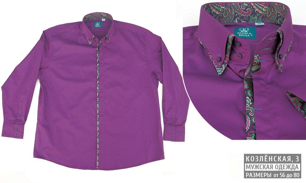 Рубашки, сорочки (длинный рукав): Оригинальная мужская сорочка с длинным рукавом в Богатырь, мужская одежда больших размеров