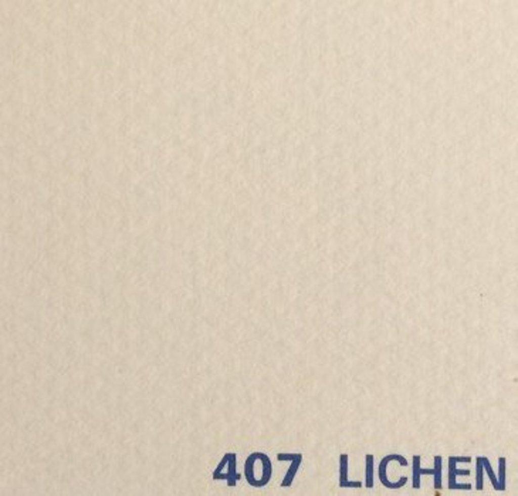 Бумага для пастели CANSON: Бумага для пастели Mi-Teintes 160г/м.кв 75*55см №407 Кремовый,1лист в Шедевр, художественный салон
