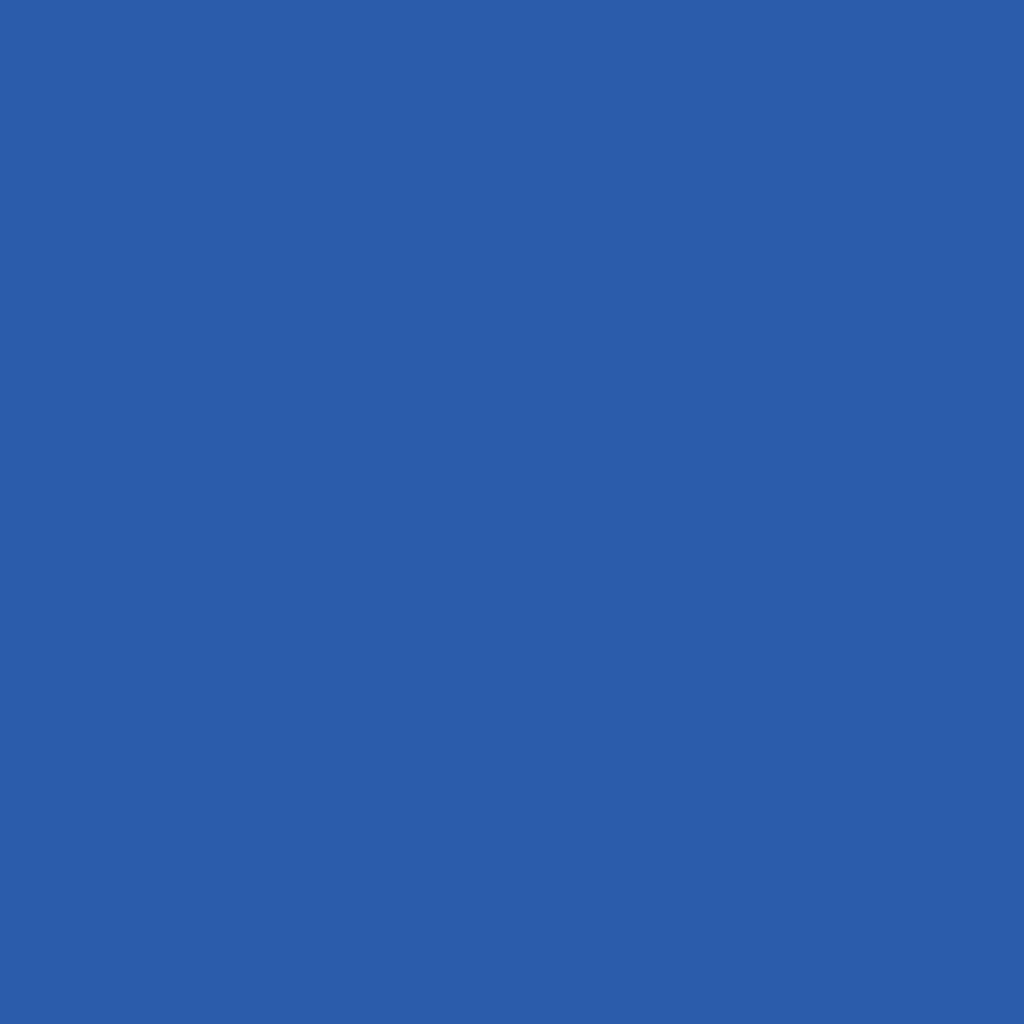 Бумага для пастели LANA: LANA Бумага для пастели,160г,50х65,королевский голубой, 1л. в Шедевр, художественный салон