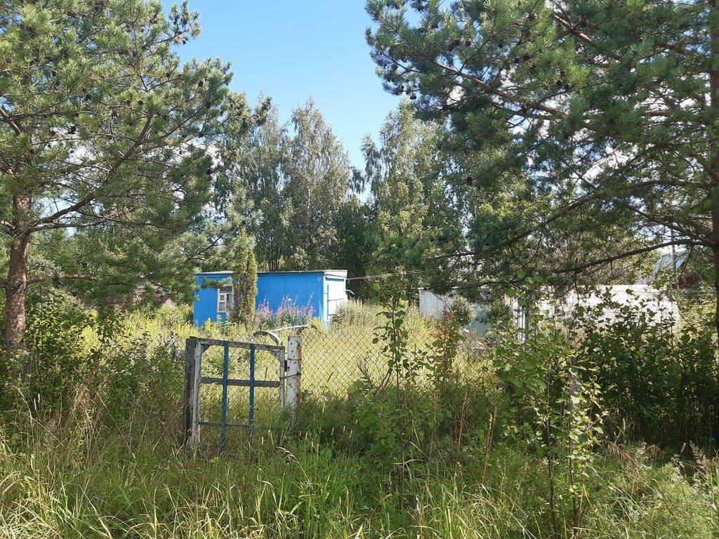 Земельные участки: Земельный участок в Шекснинском районе в Перспектива, АН