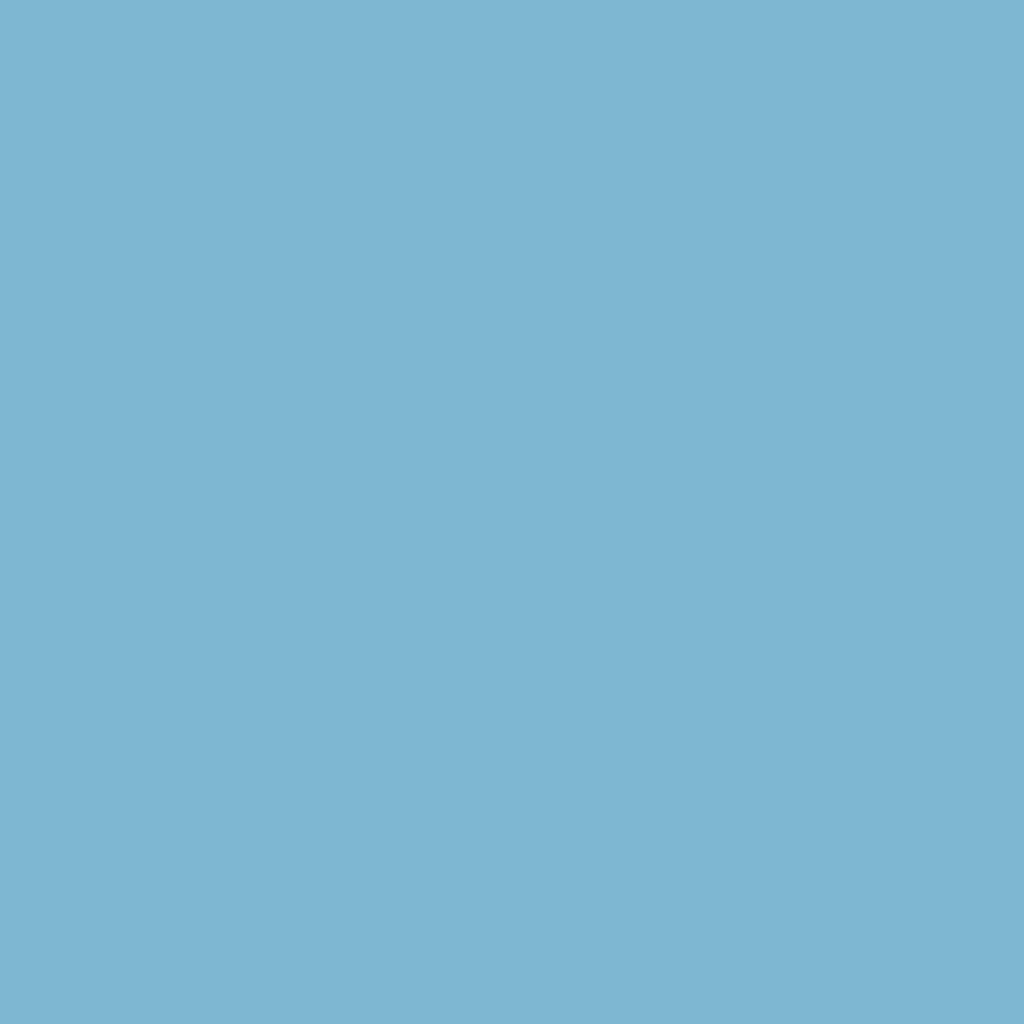 Бумага для пастели LANA: LANA Бумага для пастели,160г, 50х65,светло-голубой, 1л. в Шедевр, художественный салон