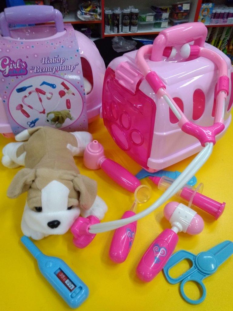 """Игрушки для девочек: Набор """"Ветеринар """"Girl's club"""", 10 предметов, мягкая собачка (20х12см), переноска. в Игрушки Сити"""