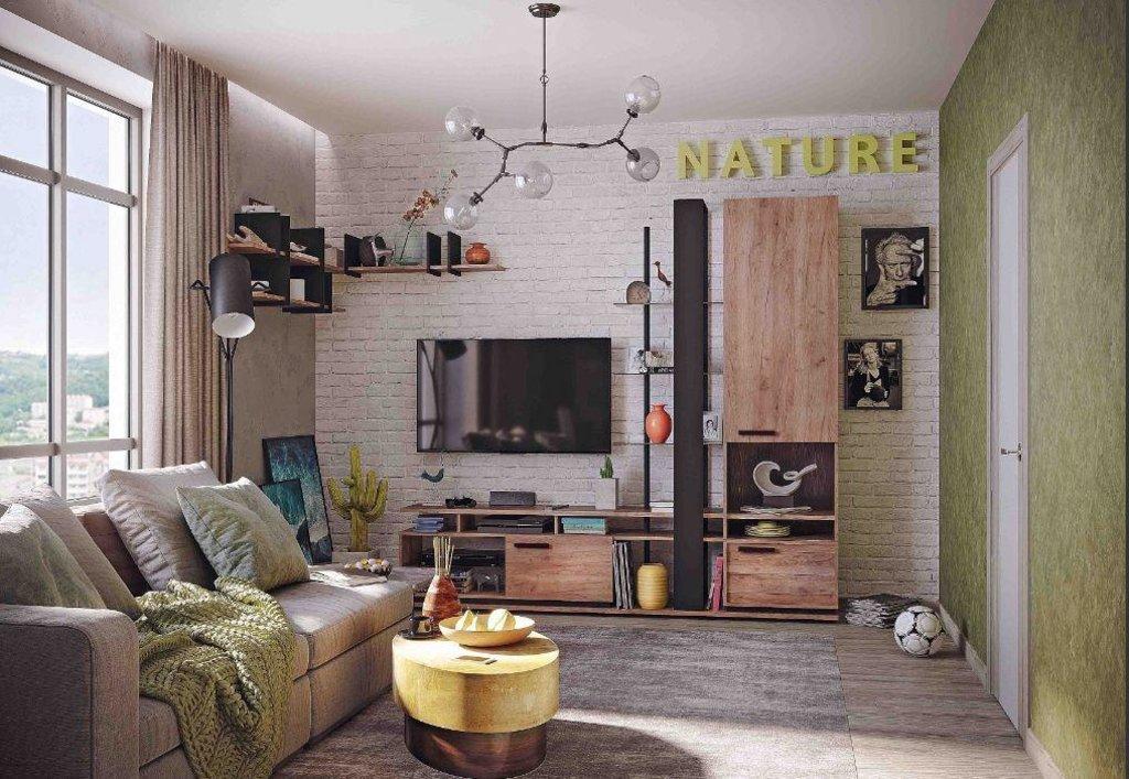 Модульная мебель в гостиную Nature: Модульная мебель в гостиную Nature в Стильная мебель