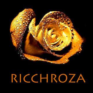 Логотип компании RICCHROZA