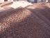 Строительные материалы, общее: Керамзит в АбсолютСтрой, ООО